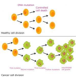 DNA-mutation-causes-cancer-diagram